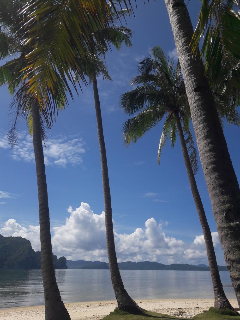 Pinagbuytan Island, Palawan the Philippines