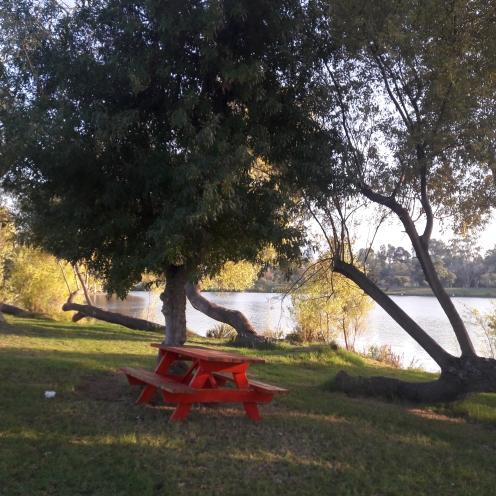 Yarkon Park Tel Aviv